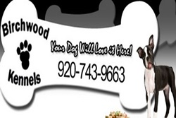 pet daycare in door county